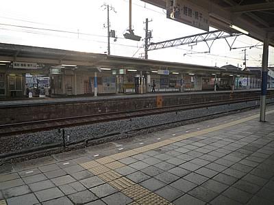 P1030058.jpg