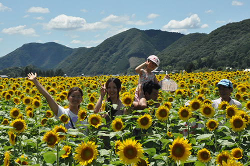 himawari04.jpg