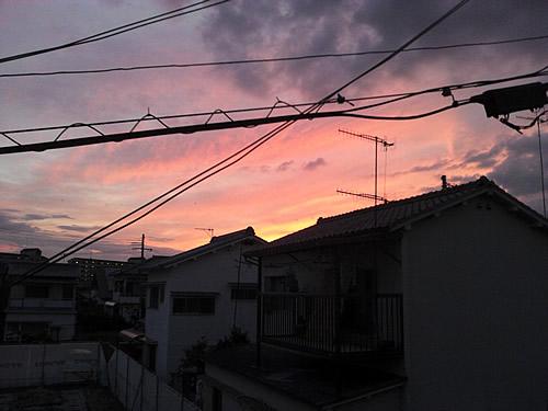 20120806_01.jpg
